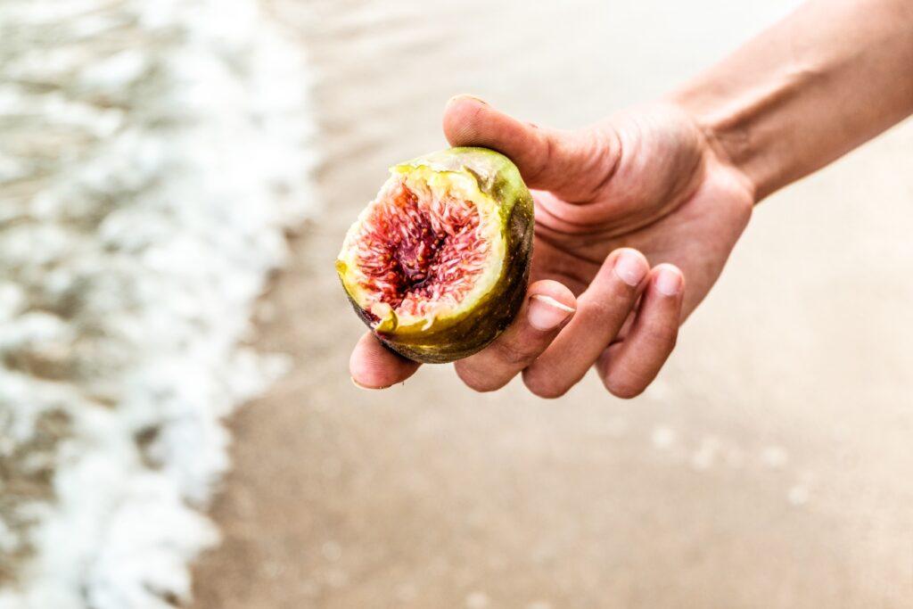 marmita para a praia