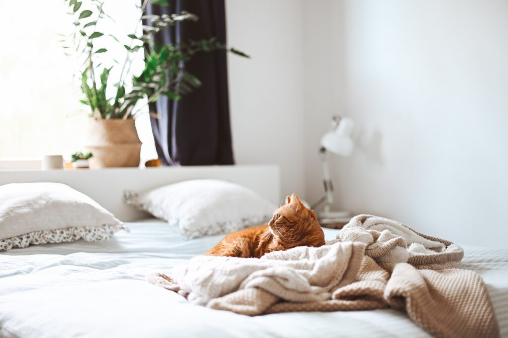 mudar os lençóis da cama