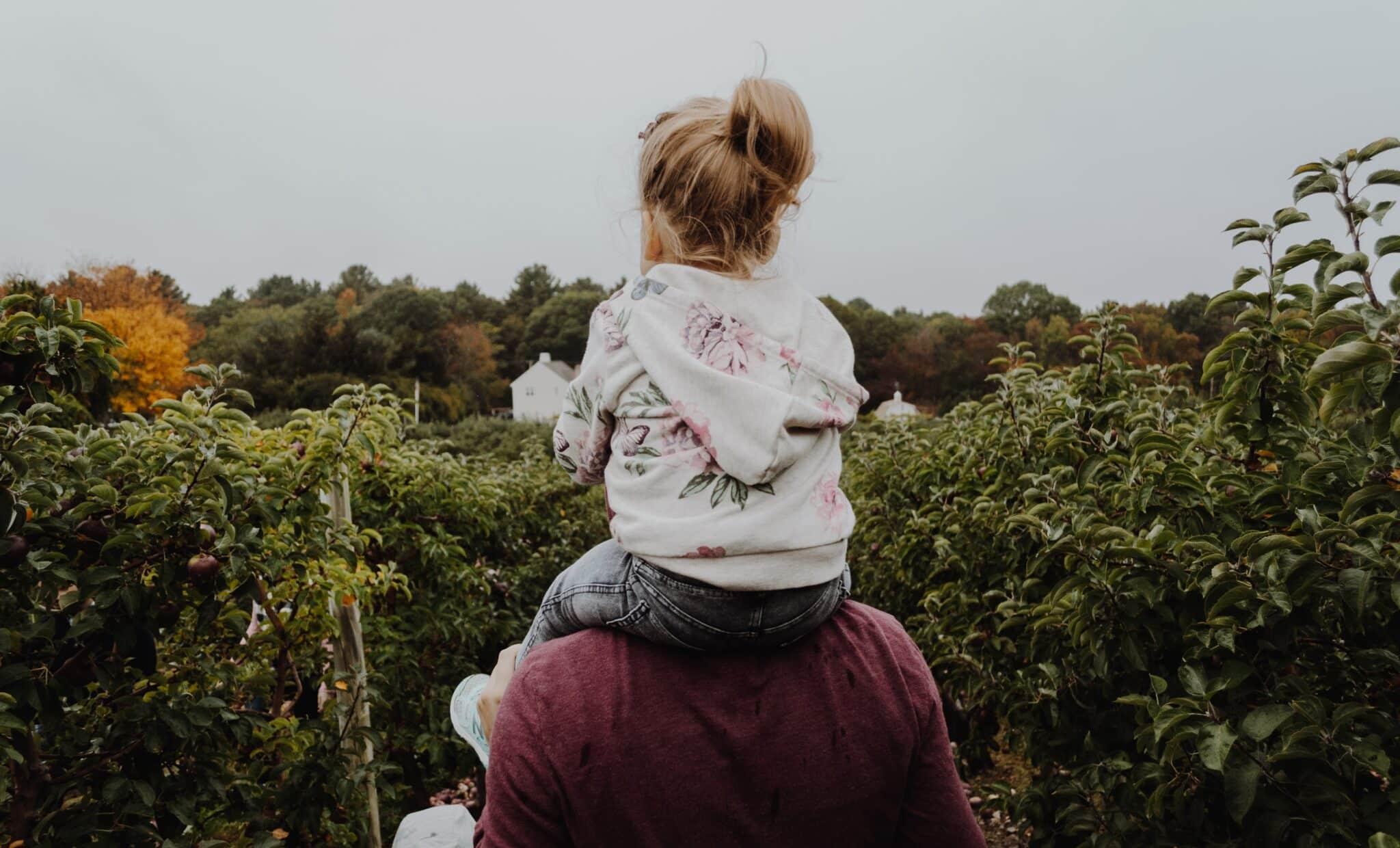 parentalidade positiva