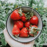 alimentos com mais pesticidas